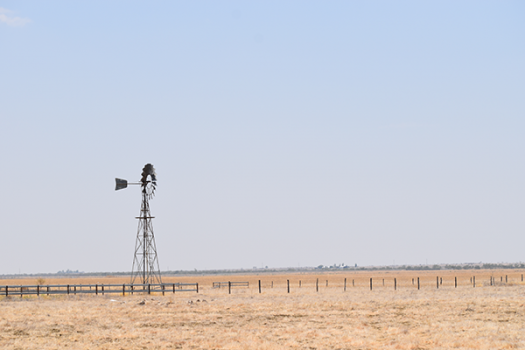 Windmill in dry paddock