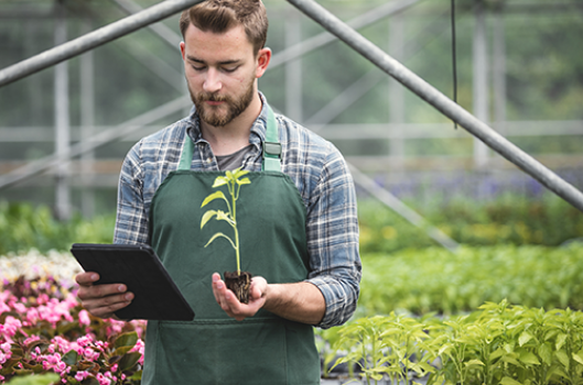 Man holding plant and iPad