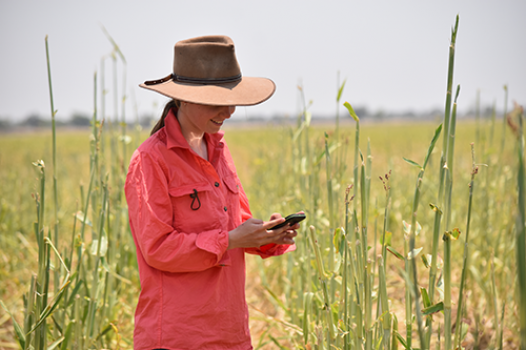 Girl standing in field on her phone