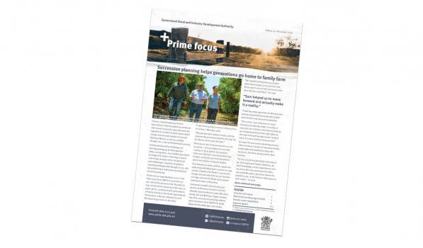 Prime Focus November 2020 Cover image