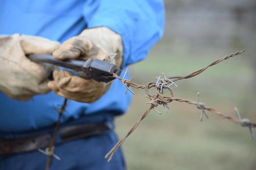 A worker holding tension on a strain of barb wire fence