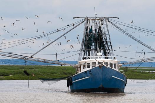 Fishing trawler at work