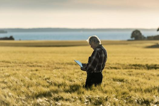 Man standing in wheat field on iPad
