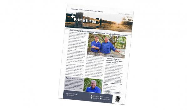 Prime Focus newsletter image - Autumn 2021 front cover